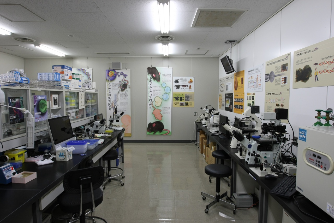 Inside mock lab