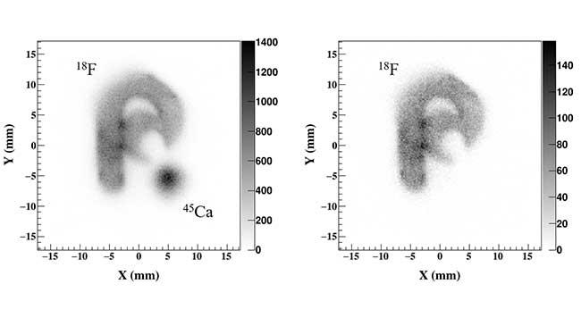 MI-IP法による2種のベータ線放出核種の計測