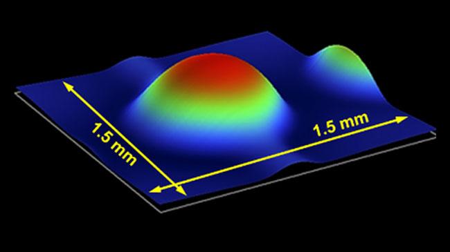 微小レンズの計測値