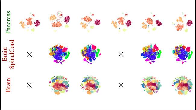 種々の主成分解析によるクラスタリングの比較