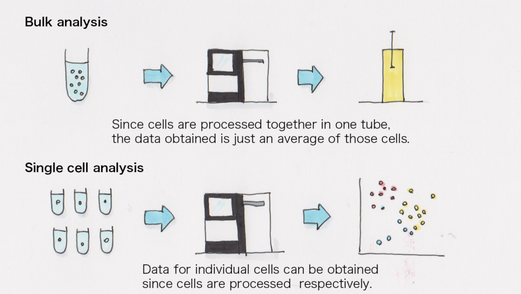 Comparison of bulk and single cell analysis