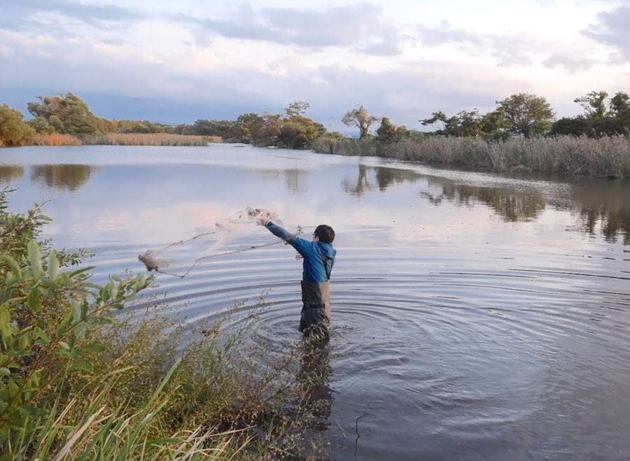 沼で投網する人