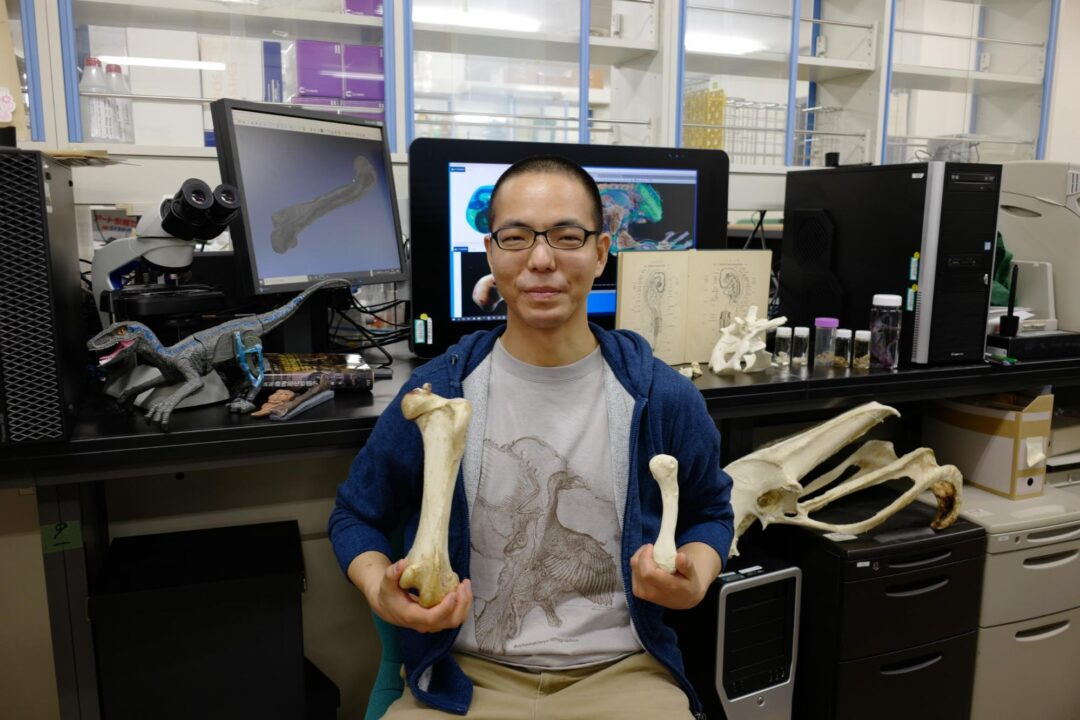 A Researcher poses with dinosaur bones